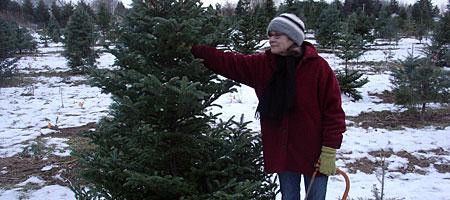 Peggi with Xmas tree and saw.