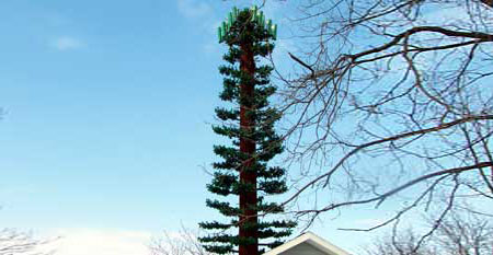 Cell tower disguised as a tree in Fairport, New York.