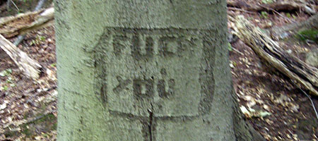 Fuck You Tree