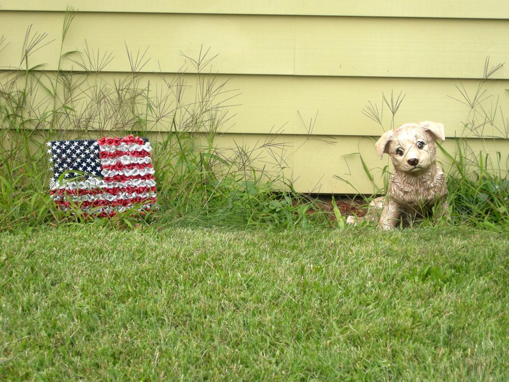 Fake dog and flag