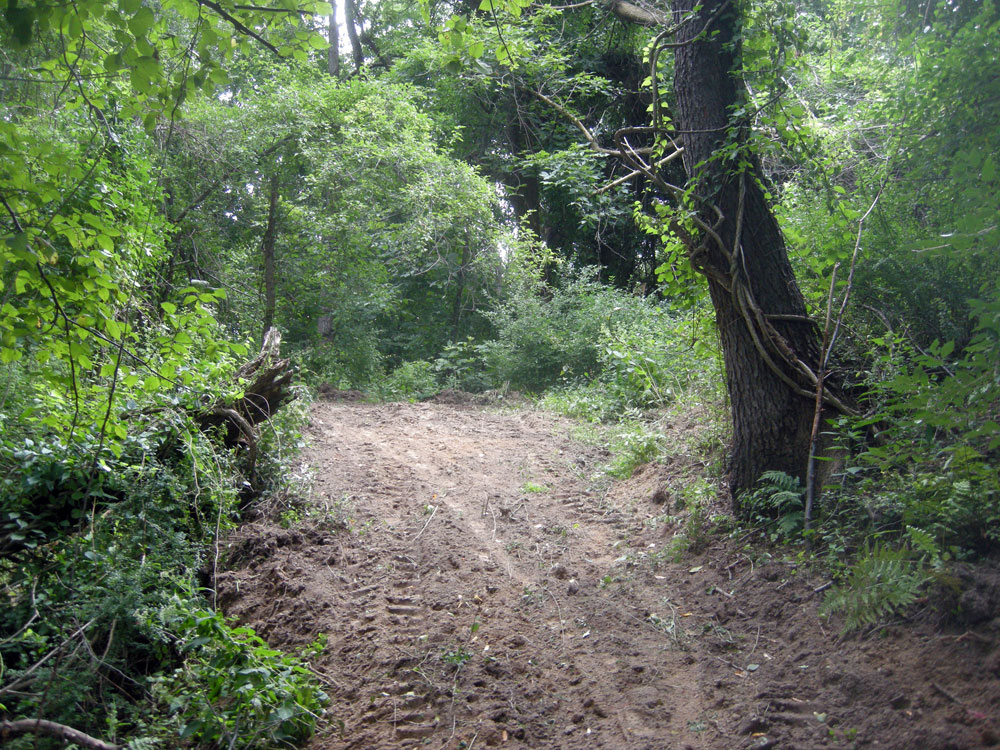 Spring Valley path after bulldoze action