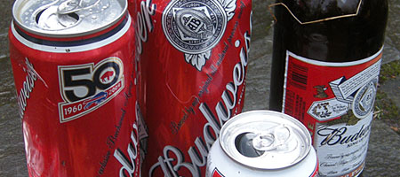 Budweiser cans and bottle found on Hoffman Road