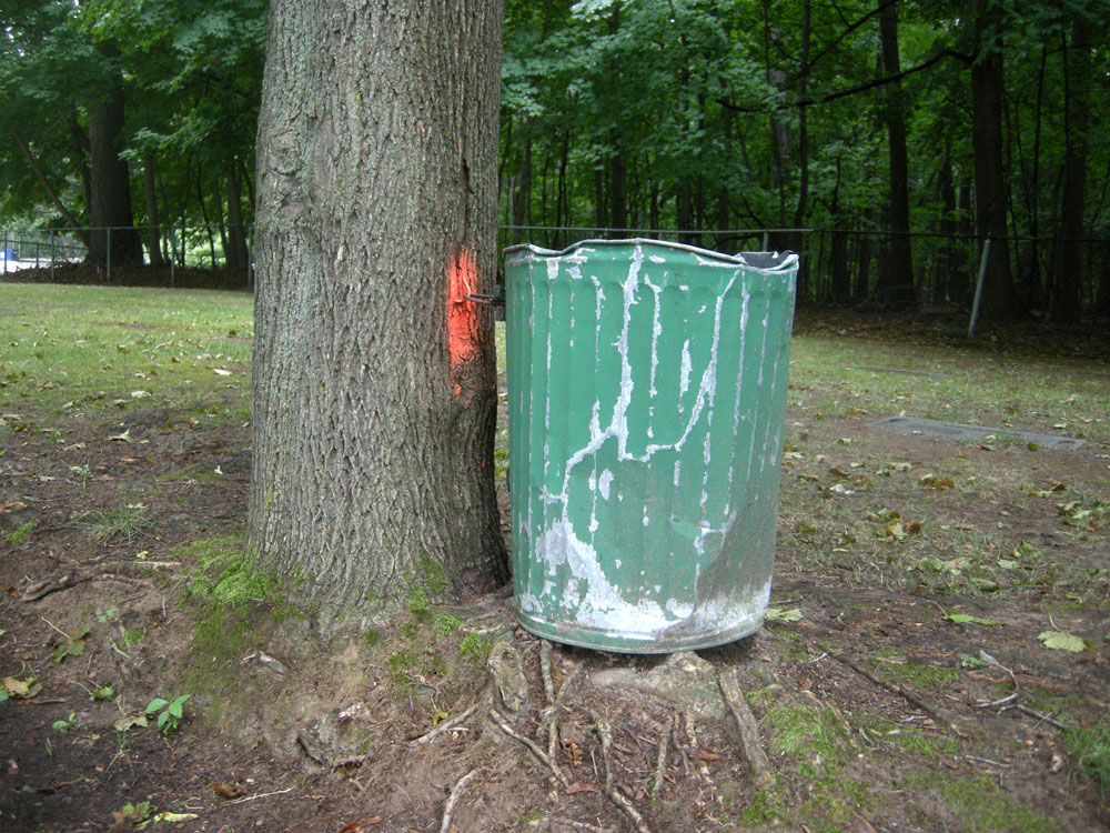 Trash can at the cemetery in Rochester New York