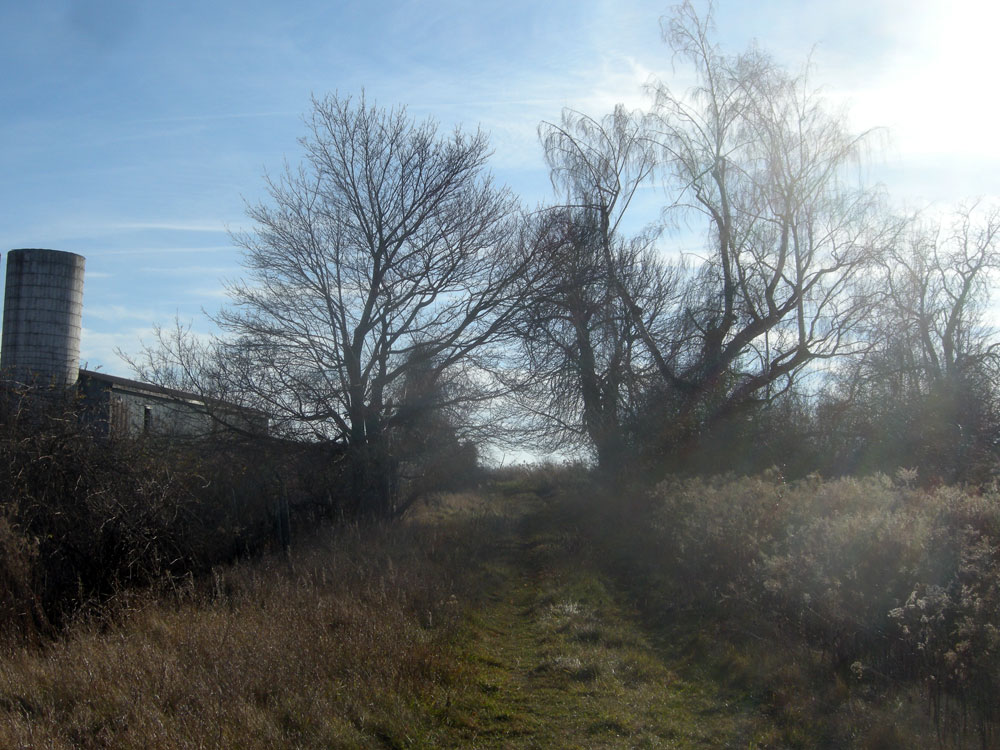 Old farm land off Westfall Road in Rochester, New York