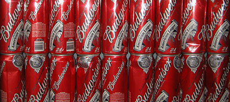 24 ounce cans of Budweiser found on Hoffman Road in Rochester, New York