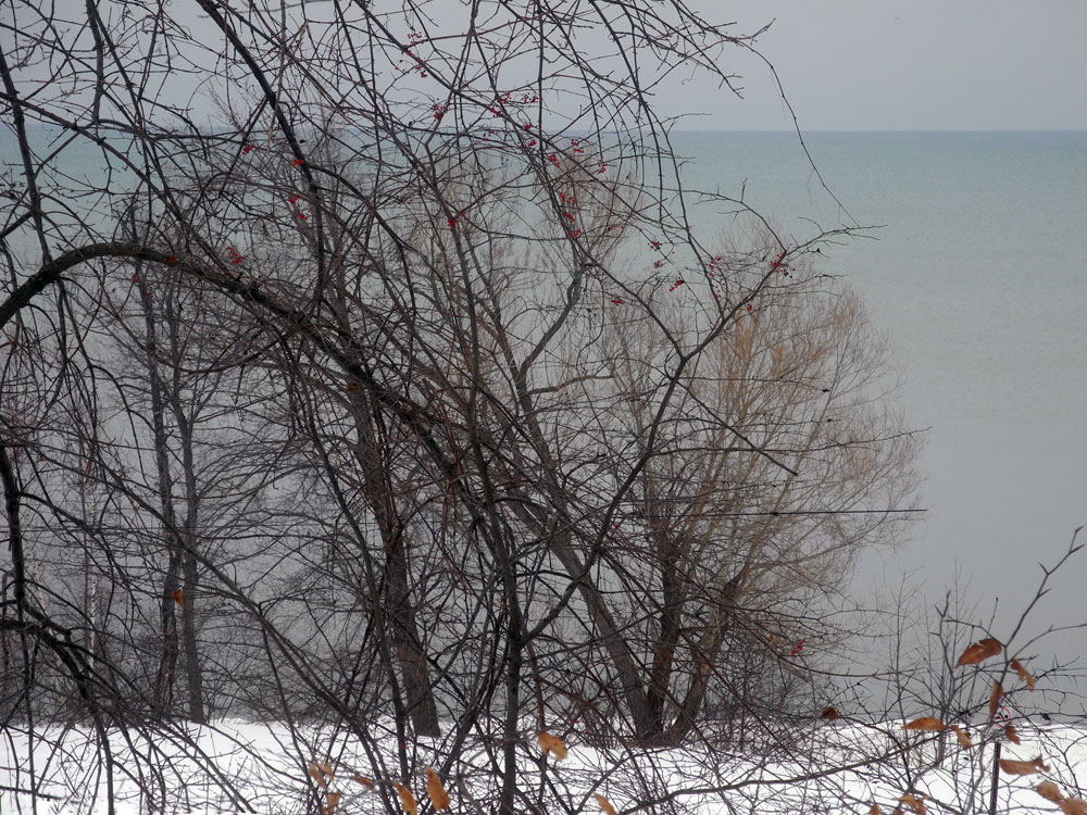 Shoreline of Lake Ontario in Winter