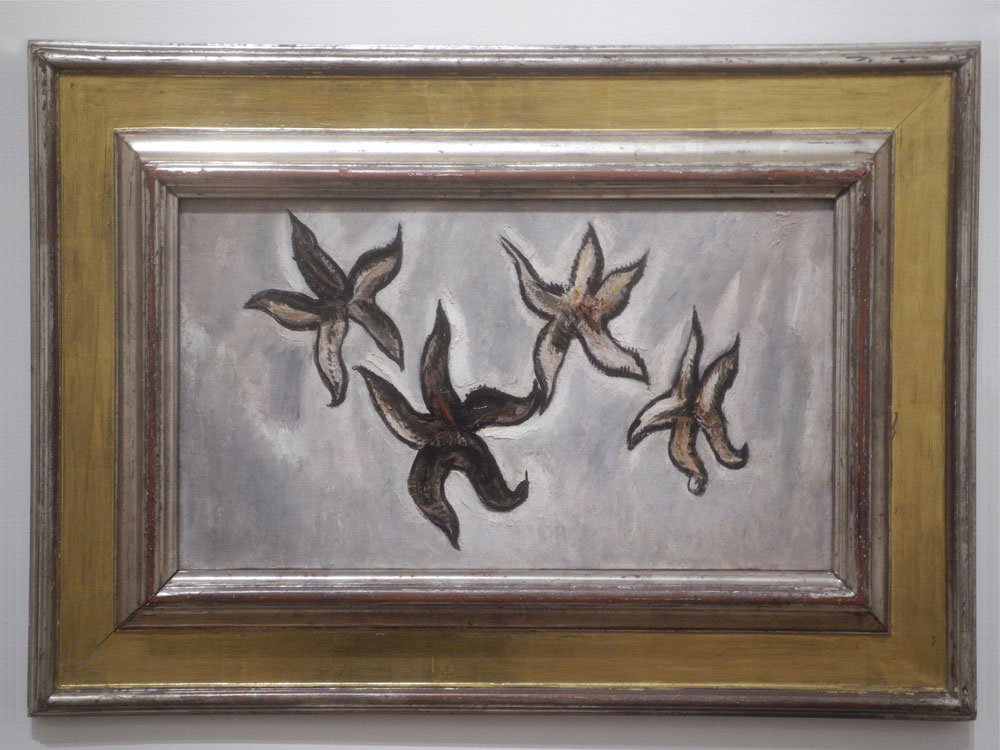 """Marsden Hartley """"Starfish"""" in Everson Museum show entitled """"American Moderns"""""""