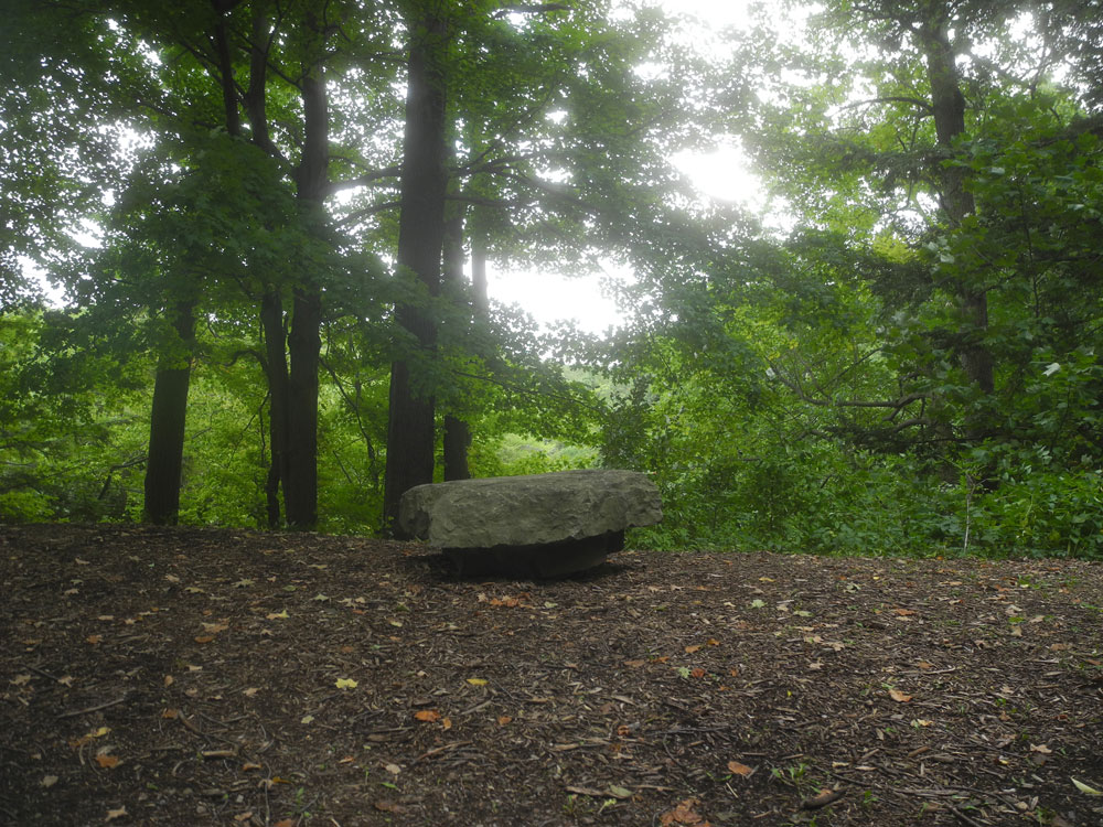 Stone bench on Log Cabin Road in Durand Eastman Park