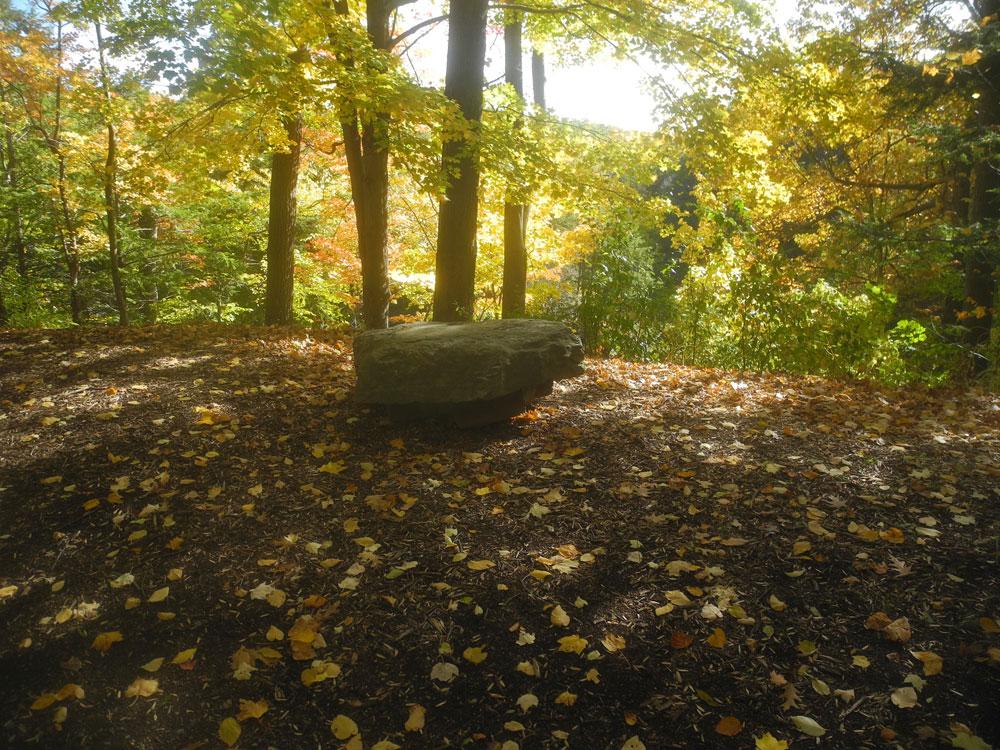 Big rock in Durand Eastman Park