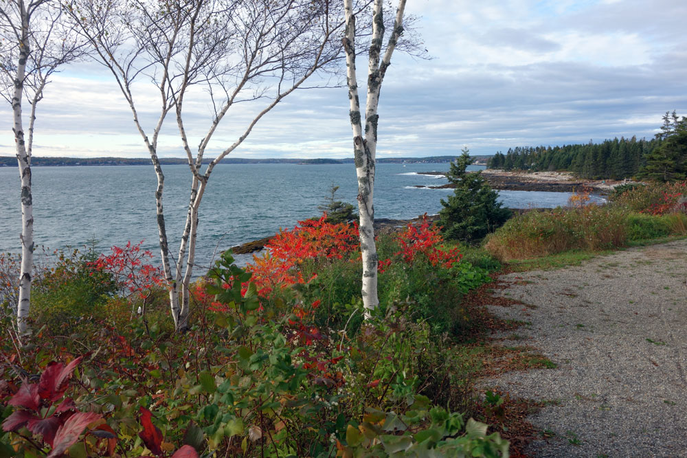View of Maine coast from Alice and Julio's