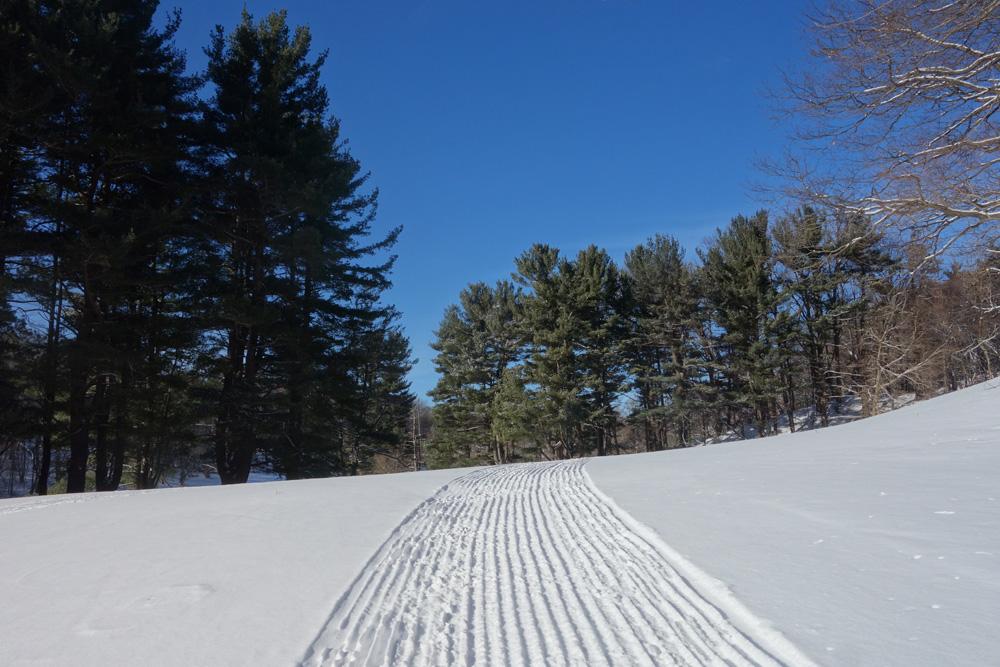 Freshly groomed cross-country ski trails in Durand Eastman Park in Rochester, New York