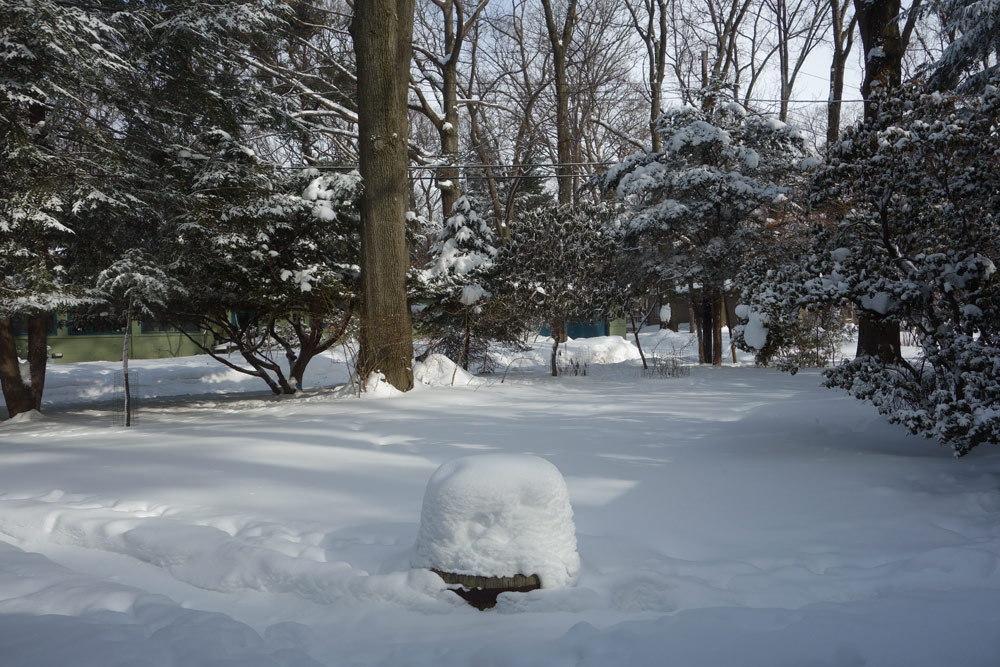 Flower pot in front yard with two feet of snow