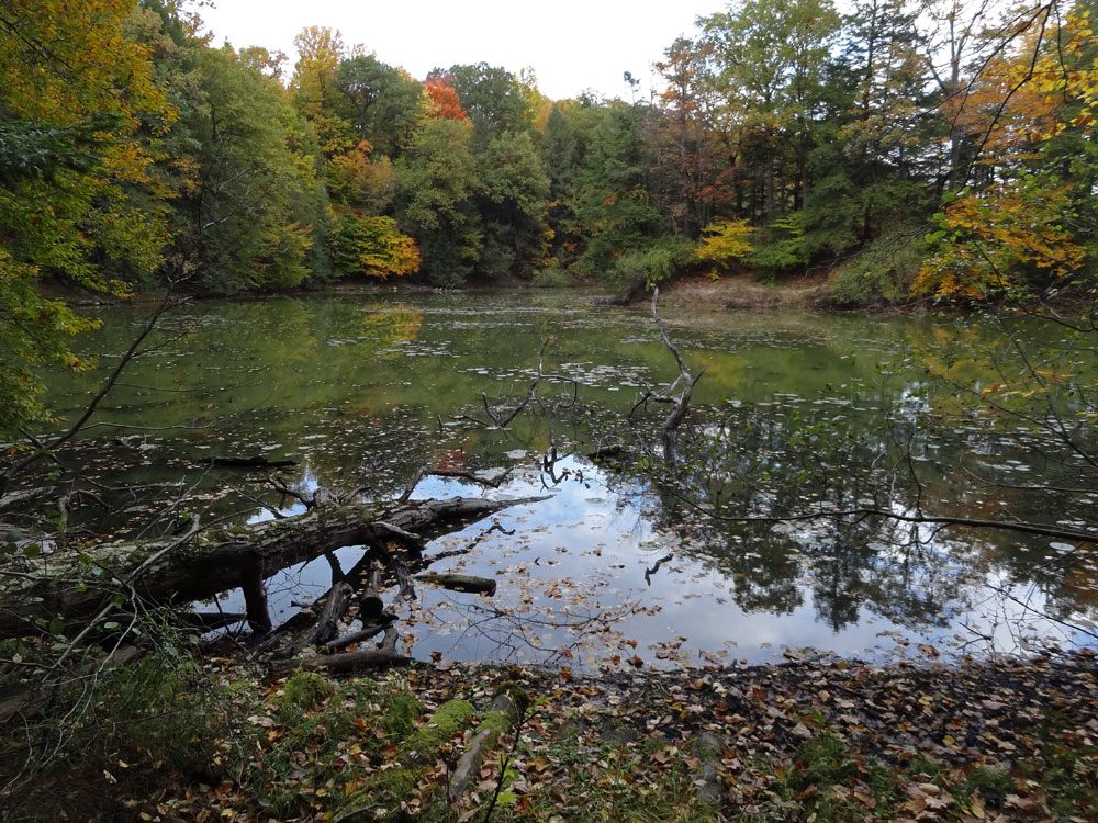 Reflections on Durand Lake in late October