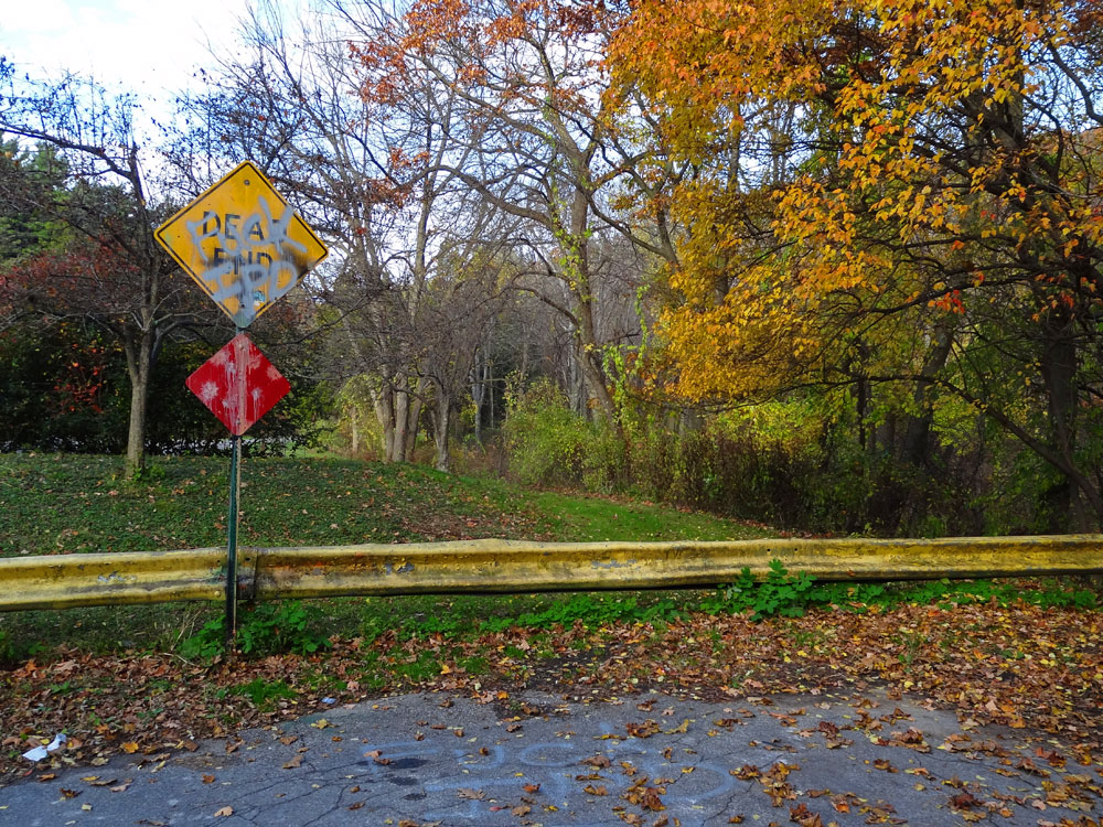 Dead end sign on Wisner Road in Rochester, New York