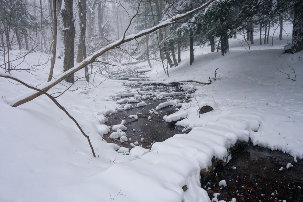 Jared's log bridge over creek in the Commons in Rochester, New York