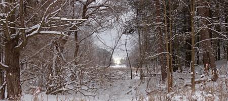 Looking across Eastman Lake in Durand Eastman Park, Rochester, New York