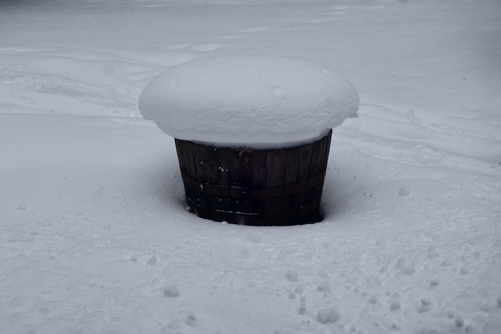Snow covered flower pot in front yard
