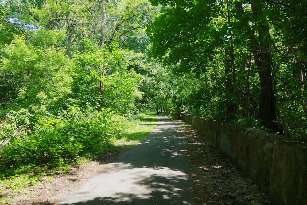 Trail along Genesee River across from UR