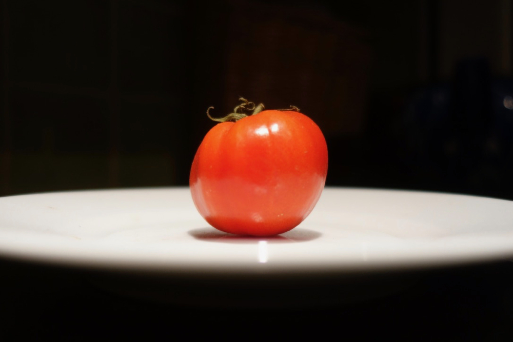 Tiny first tomato from 2018