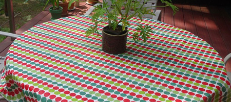 25 cent tablecloth with Citronella plant