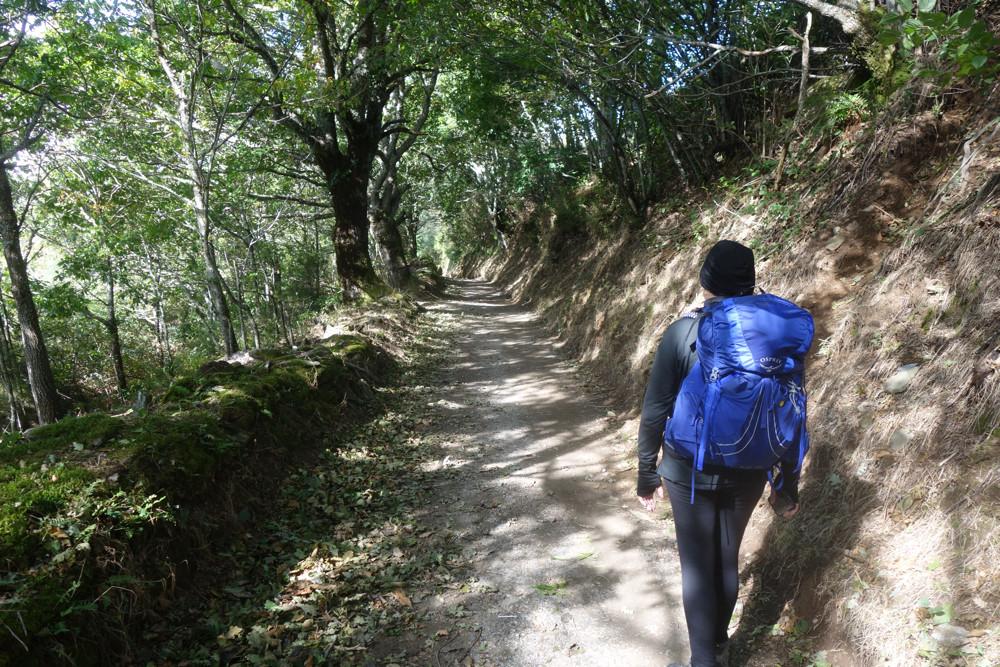 Peggi walking the Camino de Santiago near Triacastela, Espana