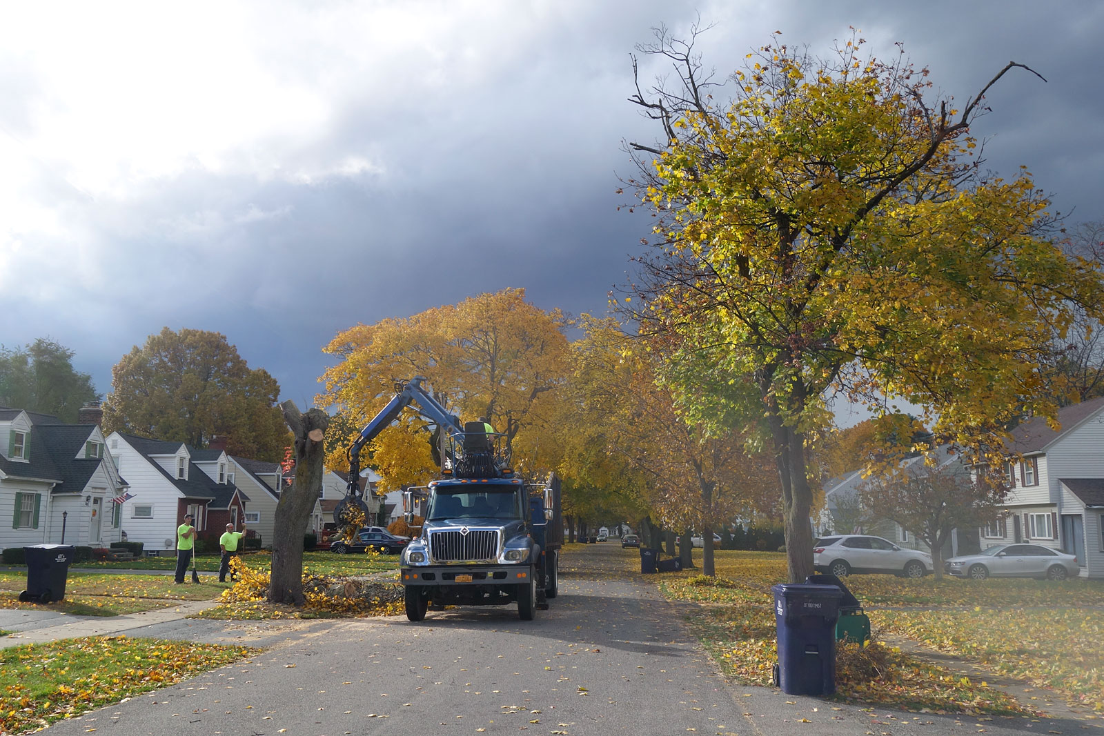 Autumn tree pruning in the Town of Irondequoit