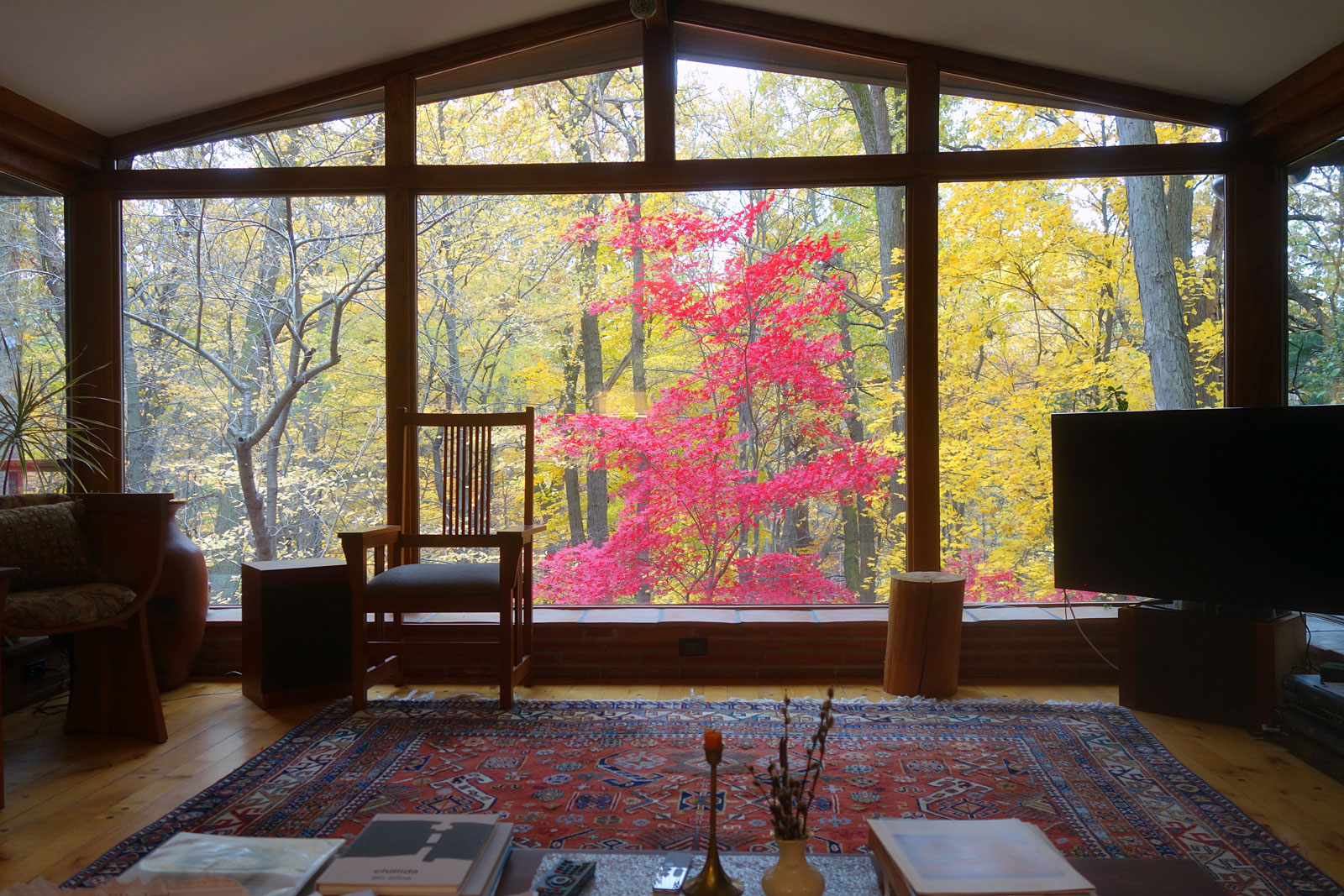 Fall from the couch, Rochester, New York