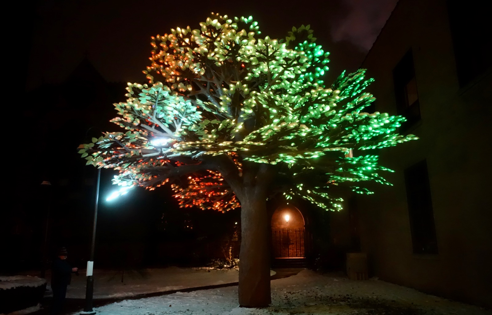 """Kalpa,"" tree of lights by San Francisco's Symmetry Labs come alive 5 -10:30pm at Rochester Contemporary"