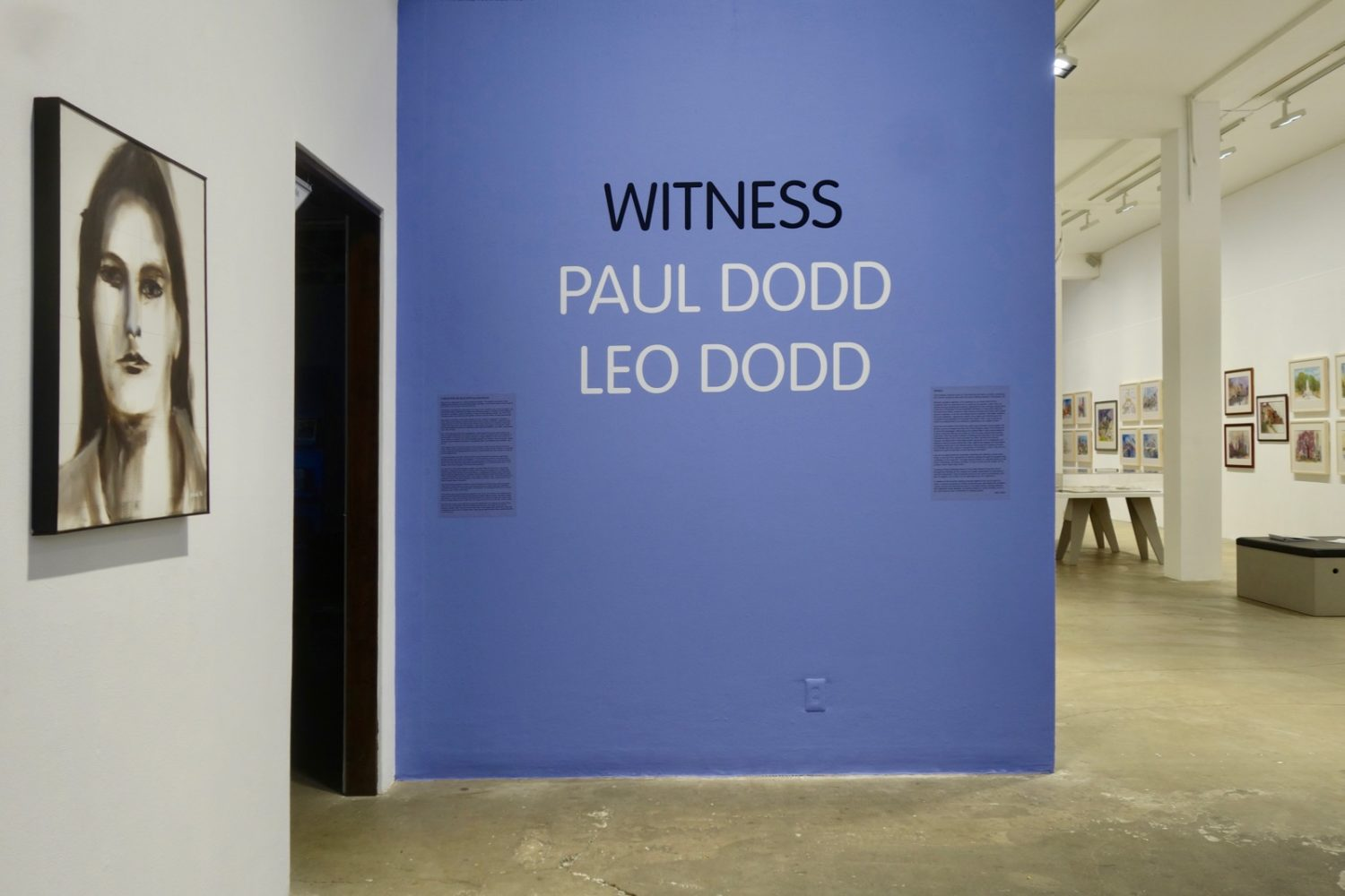 "Installation view of ""Witness - Paul Dodd, Leo Dodd"" at Rochester Contemporary 2017"