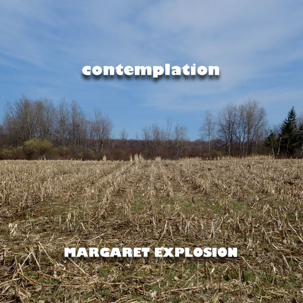 """Contemplation"" by Margaret Explosion. Recorded live at the Little Theatre on 04.30.14. Peggi Fournier - sax, Ken Frank - bass, Bob Martin - guitar, Jack Schaefer - bass clarinet, Paul Dodd - drums."