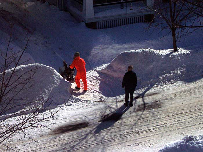 Sparky watches our neighbor, Jack, snowplow his driveway. I took this shot from our attic window.
