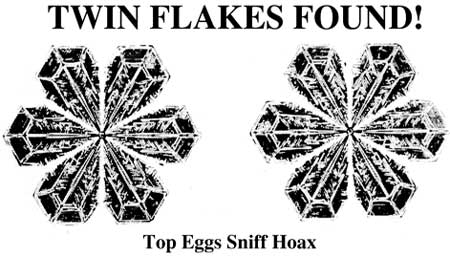 Twin Flakes Found