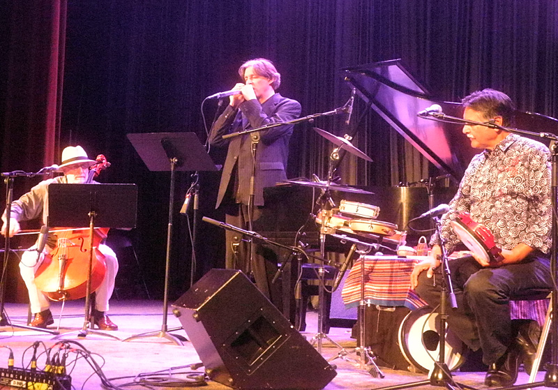 Trio Globo Howard Levy performing at the 2013 Rochester International Jazz Festival