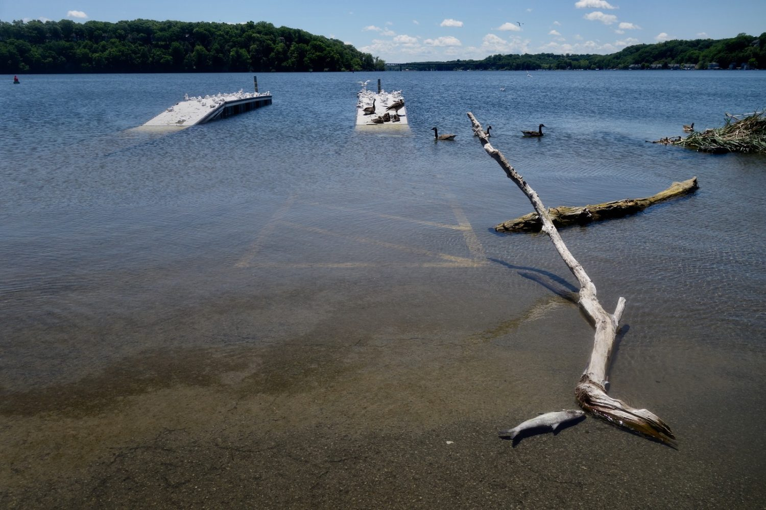 Flooded boat launch at Sea Beezee, New York