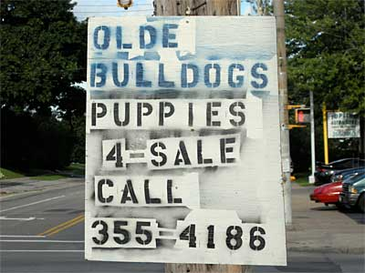 Olde Bulldogs sign