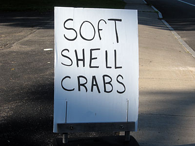 Soft Shell Crabs sign