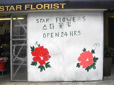 Star 24 Hour Florist