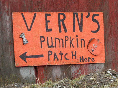 Vern's Pumpkin Patch