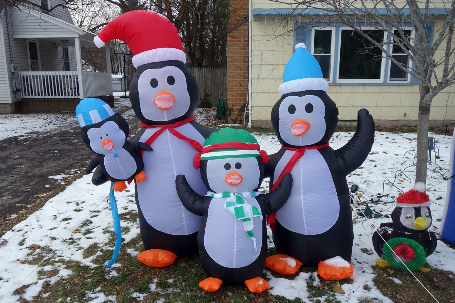 Inflatable Penguin Family  on Culver Road