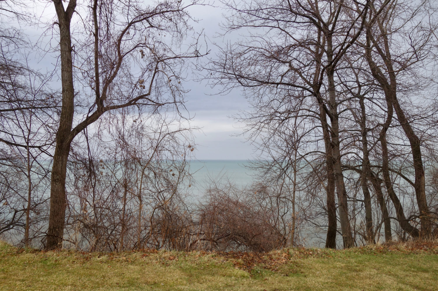View of Lake Ontario from Durand Eastman in mid January.