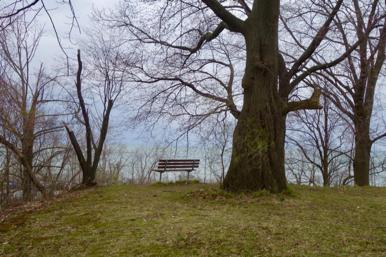 Bench in Duran Eastman overlooking Lake Ontario