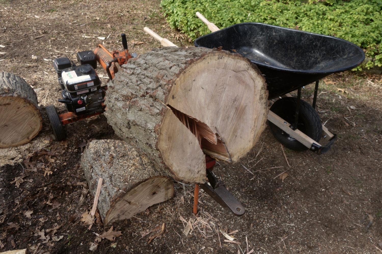 Big oak log hung up on Leo's splitter.