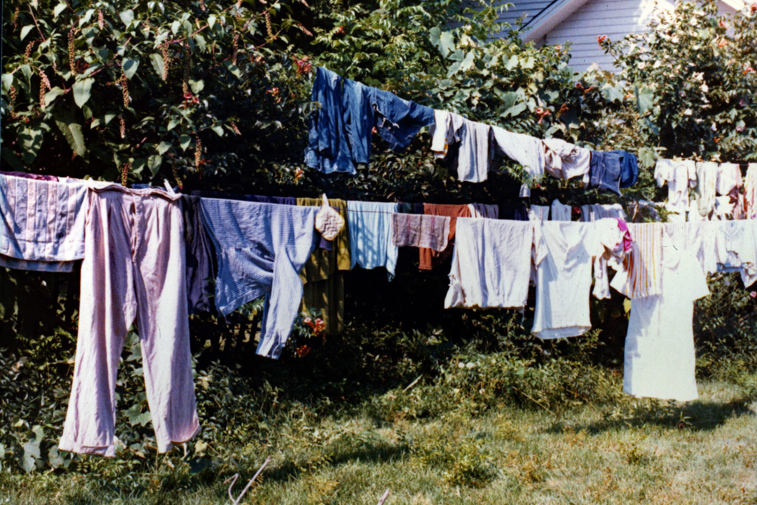 Our clothes on the line at Milton