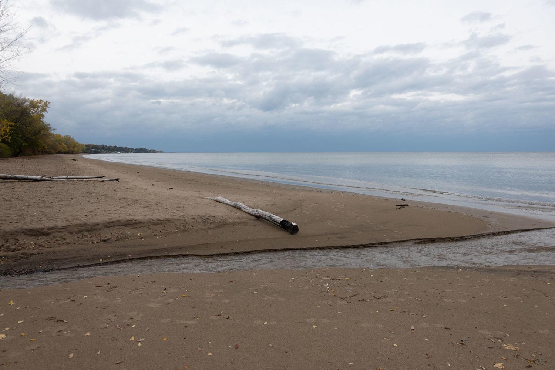 Log on beach near Eastman Lake Outlet