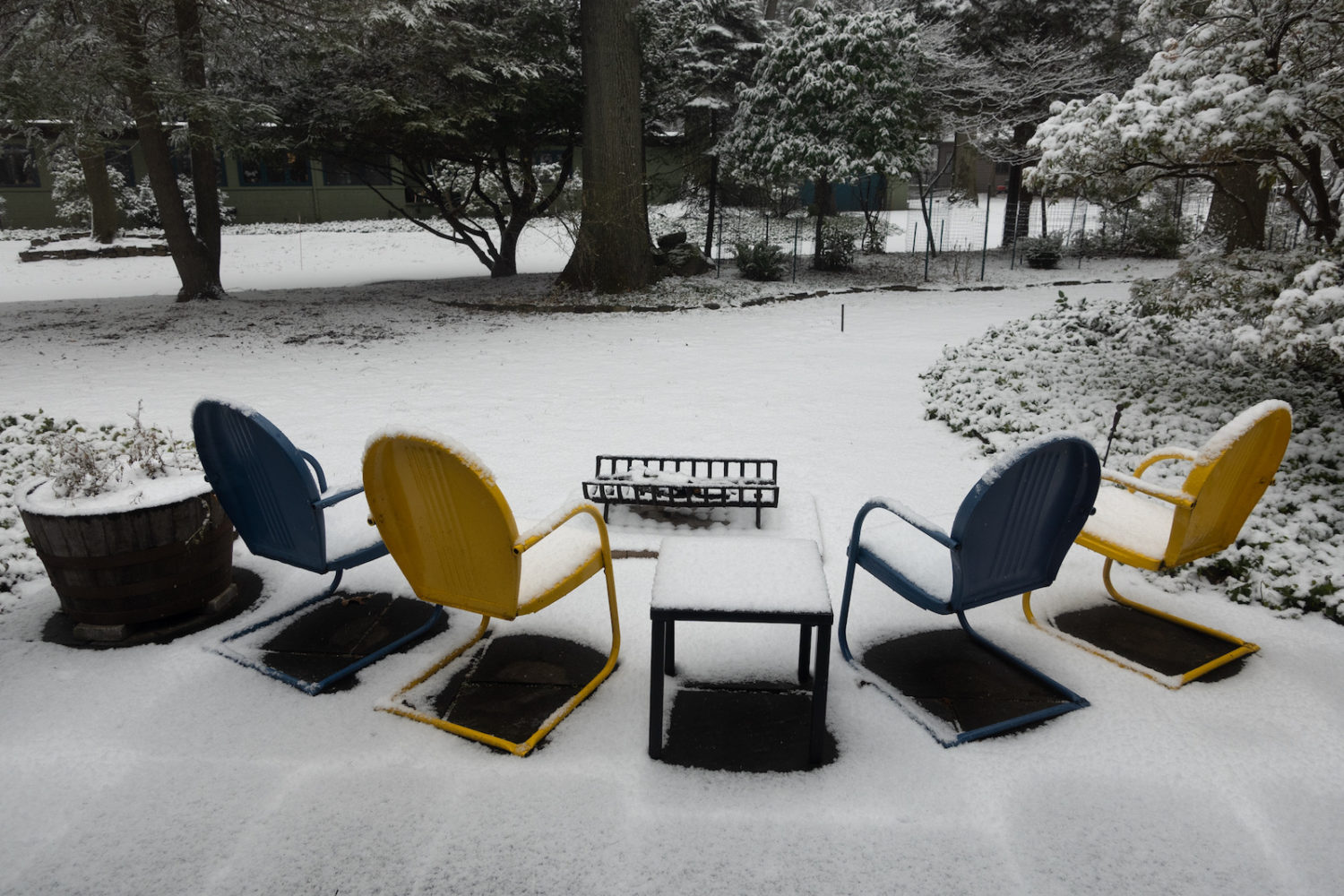 Four chairs out front in the snow