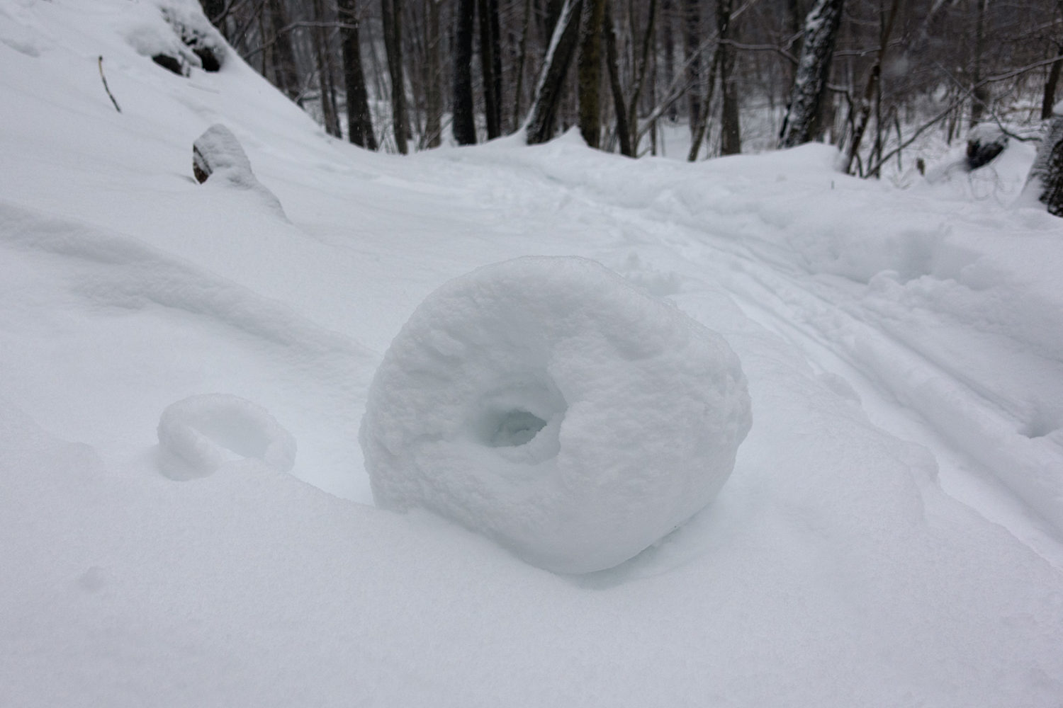Big snow roll in the Commons