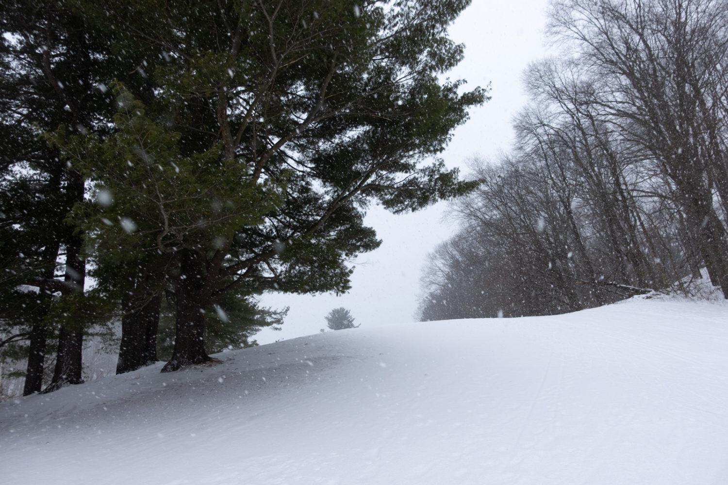 Hill on golf course in the snow