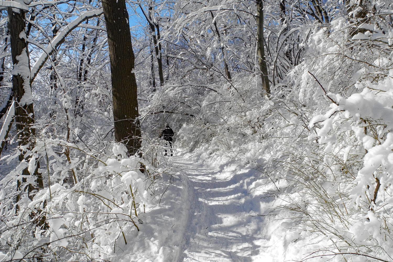 Peggi on ski path around Eastman Lake