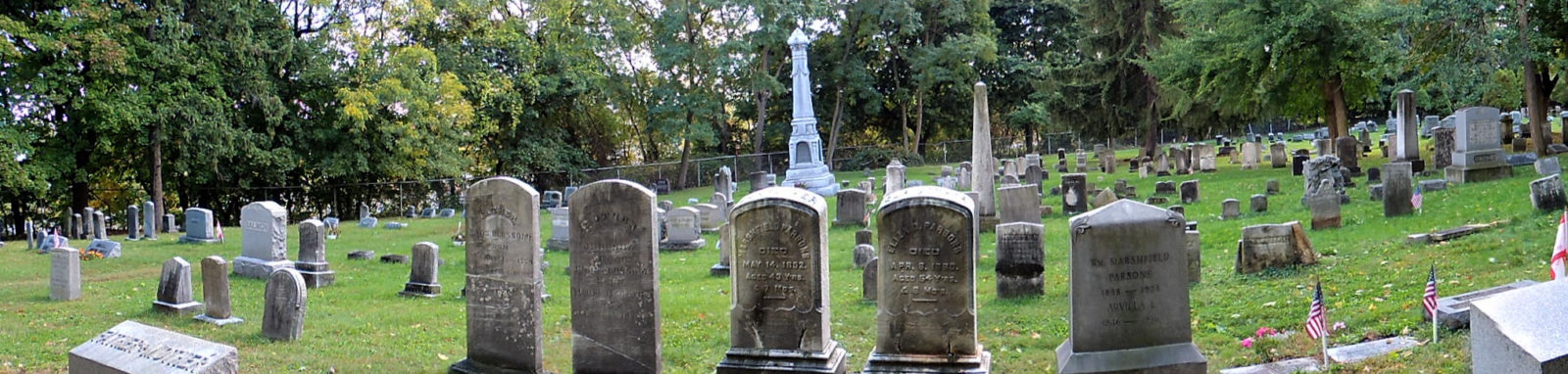 Brighton Cemetery photo by Leo Dodd 2014 from his Flickr page