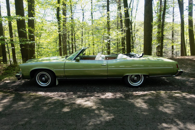 Classic car sun the park